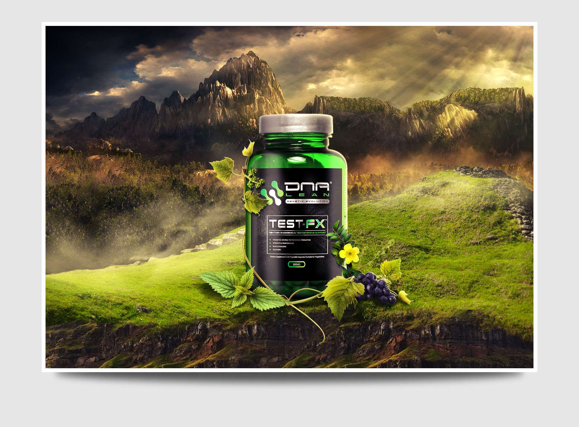 DNA Lean branding and fitness design